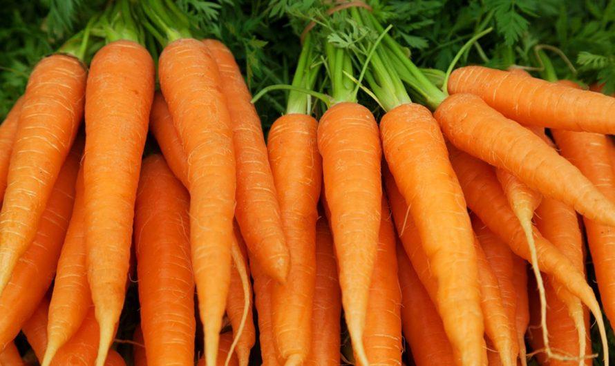 10 Хранителни ползи от моркови за зрение, кожа и здраве
