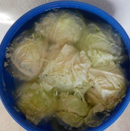 Хрупкаво и крехко кисело зеле за зимата по рецептата на Бай Минчо !