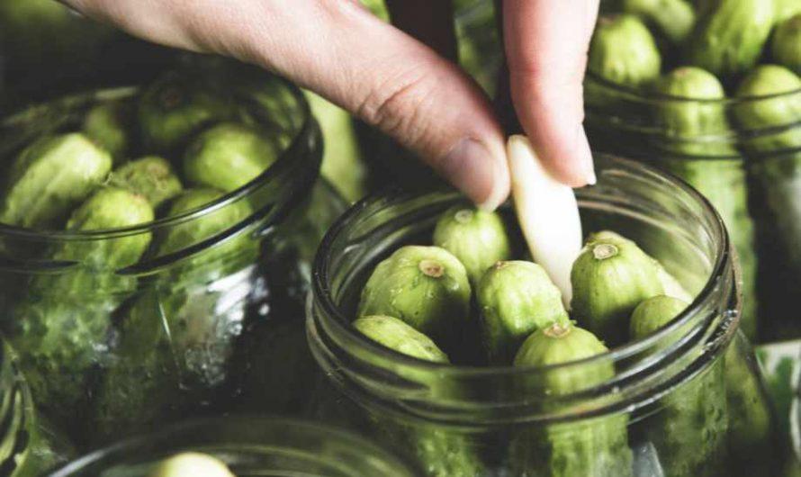Вкусни мариновани краставички без варене